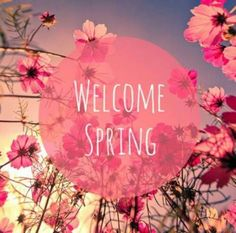 Welcome my lovely spring<3