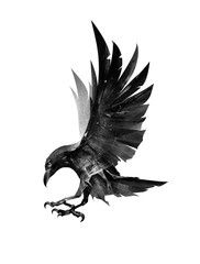 Find Drawn Flying Bird Raven On Side stock images in HD and millions of other royalty-free stock photos, illustrations and vectors in the Shutterstock collection. Kunst Tattoos, Body Art Tattoos, Tattoo Drawings, Sleeve Tattoos, Fox Tattoos, Phoenix Tattoos, Elephant Tattoos, Hand Tattoos, Art Viking