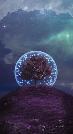 Tree wallpaper magical