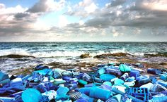 The series, Washed Up: Transforming a Trashed Landscape, created by Alejandro Duránto to Raise Awareness of Plastic Pollution on the shores of Sian Ka'an, Mexico