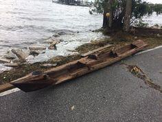 Ce dugout canoe, remonté du fond de la rivière après le passage d'Irma, pourrait être vieux de plusieurs siècles