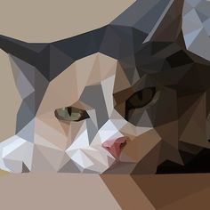 polygon art cat
