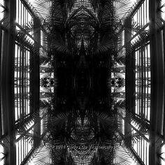 Jaula de Palmeras. 1/4. Carlos De Vasconcelos. CMDVF. #CarlosDeVasconcelos #CMDVF #Diseño #Ilustración #Arte #Artista #BlancoyNegro #Jaula #Palmera / #Design #Illustration #Art #ArtWork #Artist #BlackAndWhite #bw #bnw #Cage #Palm Illustration, Animation, Black And White, Abstract, Drawings, Artwork, Pictures, Painting, Image