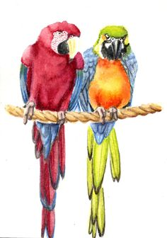 Watercolor Animal Painting Parrots 5x7 print by Earthspalette, $10.00