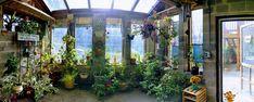 My first green house finally - year-round gardening! https://imgur.com/QvWDD9i