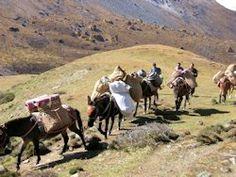 Gruppe Wanderer auf dem Linghi Laya Trek