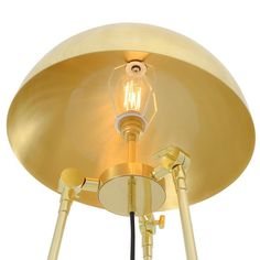 Crafted to mimic the dome and tentacle shape of jellyfish that inhabit the depths of our oceans, the Maua brass floor lamp is daringly decorative.