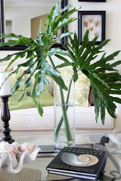 I love large green leaves in vases.