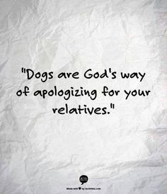 Dogs are God's way of apologising for your relatives.