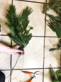 How To Make Real Evergreen Garland — m e g h w i n g e n f e l d Its Christmas Eve, Holiday, Different Shades Of Green, Local Florist, Just Giving, Evergreen, Garland, Berries, Herbs
