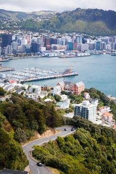 One of the best places to get your bearings in the city of Wellington is from the Mount Victoria Lookout. The panoramic views stretch from the harbor islands all the way to planes taking off and landing at the airport south-east of the city center. New Zealand Cities, New Zealand North, New Zealand Houses, New Zealand Travel, Auckland, Wellington New Zealand, Wellington City, Harbor Island, New Zealand Landscape