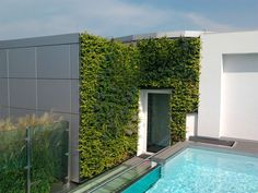 An elegant outdoor vertical garden made by Sundar Italia