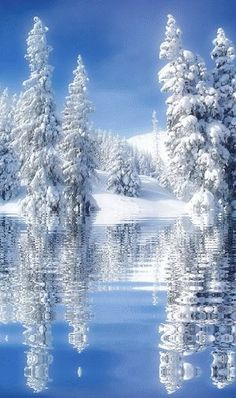 倫☜♥☞倫 Winter reflection.... ~ CLICK ON THE PICTURE AN WATCH IT COME TO LIFE…