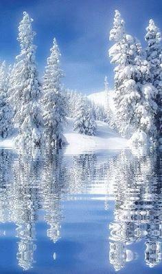 reflets hivernaux: