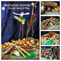 Sun Hats & Wellie Boots: Nocturnal Animals - Small World Play Eyfs Activities, Outdoor Activities For Kids, Animal Activities, Outdoor Learning, Autumn Activities, Book Activities, Animals That Hibernate, Baby Owls, Owl Babies