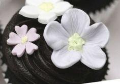 Técnicas de repostería Cake Recipes, Succulents, Decorations, Chocolate, Baking, Plants, Ideas, Gastronomia, Torte Recipe
