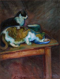 Le repas des deux chats - a meal for two cats | NicolasTarkhoff
