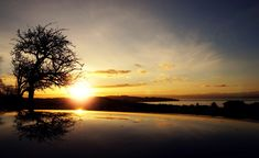 #clouds #reflection #silhouette #sunrise #sunset #tree