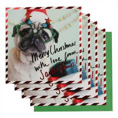 Photographic pug charity Christmas cards - pack of 8
