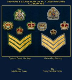No 1 dress Military Ranks, Military Insignia, Military History, British Army Uniform, British Uniforms, British Armed Forces, Modern Warfare, Army Badges, Chevron