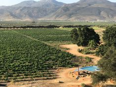 Bruma:Valle De Guadalupe, Mexico | These beautiful wineries are some of the most beautiful in the world, from Argentina to Australian, Amalfi and everything in between.