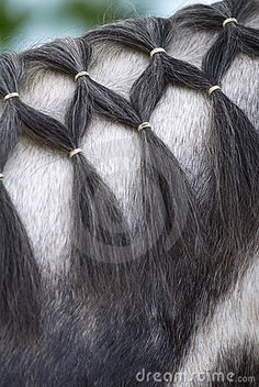 Braided horse mane by Kamensky, ...........click here to find out more…