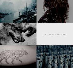 13 idee su Wolf by Wolf | libri, ragazza cafe racer, ragazza della  motocicletta