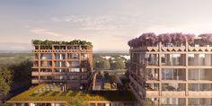 CIVIC architects & VERO - Stadsbiotoop - Den Haag
