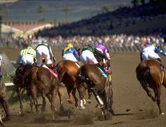 horses running wallpaper - Căutare Google Horse Racing, Horses, Running, Wallpaper, Hats, Google, Animals, Animales, Hat