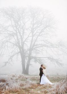 If it's foggy on my wedding day, I am hunting down a tree like this and demanding we have our picture taken in front of it.