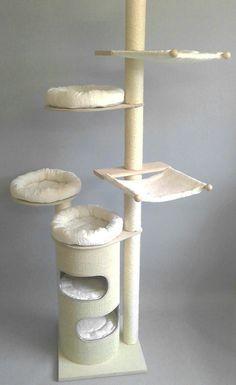 379 SONJA - Arbres à chat
