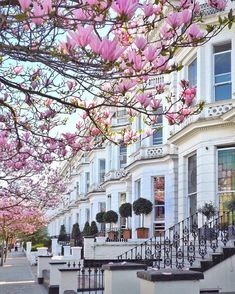 Notting Hill London London Congrats Katerina Katopis Verwenden Sie - Travel and Extra London Street, London City, Love London, Chelsea London, London Pubs, Places To Travel, Places To Go, Notting Hill London, Voyage Europe