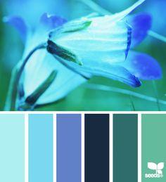 Het blauw van nu. lichtblauw, turkoois, teal en petrol tinten