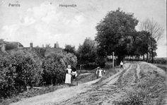 Hoogedijk