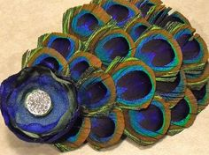 fascinator -peacock feathers