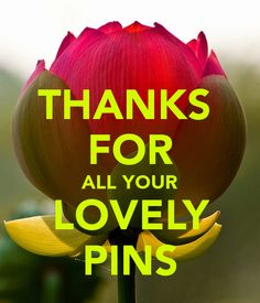 THANKS FOR ALL YOUR LOVELY PINS . You each are a blessing to me and others. God Bless you as you spread His Word.