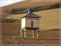 Pigeonnier de Puylaurens, pas très loin de Brin de Cocagne - chambre d'hôtes écologique de charme dans le Tarn près d'Albi - Brin de Cocagne