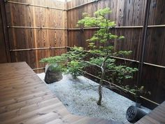 What Are 11 Key Features Of Japanese Interior Design Japanese Garden Style, Indoor Gardening Supplies, Japan Garden, Japanese Interior Design, Outdoor Gardens, Zen Gardens, Interior Garden, Japanese Architecture, Winter Garden