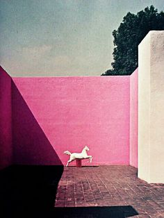 Love Pink #LuisBarragan