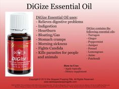 I'm selling Digize essential oil from Young Living for Get it on Shopee now! Digize Essential Oil Uses, Digize Essential Oil Young Living, Essential Oils For Candida, Young Living Digize, Therapeutic Essential Oils, Essential Oils Guide, Young Living Oils, Essential Oil Blends, Young Living Peppermint