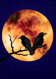 """Ravens in Moon - Crows on Branch starry night sky bird silhouette poster print 5x7"""""""