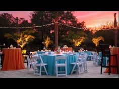 Wild Dunes Resort Weddings// Explore Palm Cove Outdoor Event Venue