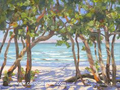 Beautiful Florida paintings for the Florida home by acclaimed Florida artist Carol McArdle Painting Still Life, House Painting, Paintings For Sale, Original Paintings, Artwork Display, View Image, Art Blog, Oil On Canvas, Florida