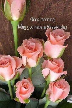 Good Morning Sister, Good Morning Tuesday, Good Morning Prayer, Good Morning Picture, Happy Morning, Morning Blessings, Morning Music, Monday Blessings, Happy Sunday