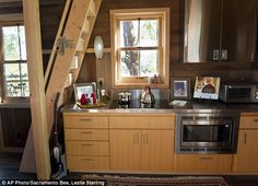 treehouse masters inside google search