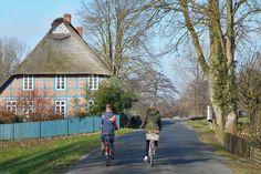 Unser Weg auf dem Deich führt uns vorbei an grünen Wiesen und reetgedeckten Fachwerkhäusern.