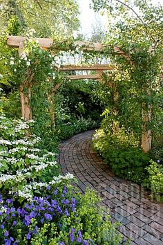 Quality Horticultural Images and Plant and Garden Photos Picture Library with over 2 Million Images! Garden Landscape Design, Small Garden Design, Garden Arches, Garden Path, Garden Structures, Garden Spaces, Dream Garden, Garden Planning, Backyard Landscaping