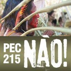 PEC215Nao  Apoio à mobilização pelos direitos indígenas e quilombolas. Contra a ofensiva ruralista a esses direitos.