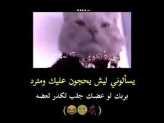 Pin By شجن On Romantic Songs Video Romantic Songs Video Romantic Songs Youtube Videos Music