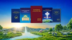 The way of eternal life: God personally has told us. Here are some Bible verses and 8 passages of God's words about the way of eternal life. They will help you gain the way of eternal life bestowed by God. True Faith, Faith In God, Justified By Faith, Spirit Of Truth, Holy Spirit, The Bible Movie, Jesus Return, Get Closer To God, Kingdom Of Heaven